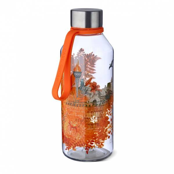 Wisdom - Flaske- ILD