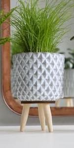 Bilde av Potteskjuler grå, med bein, diamant 12 cm