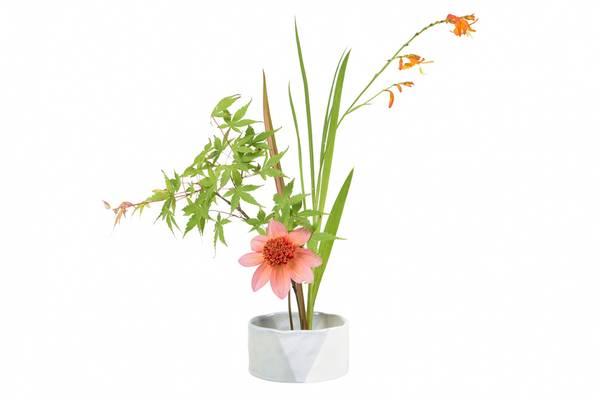 Ikebanaskål