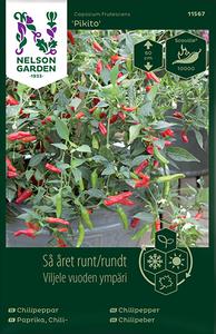 Bilde av Chilipepper 'Pikito' -  Capsicum frutescens