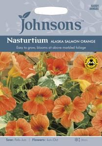 Bilde av Blomkarse 'Alaska Salmon Orange', lav - Tropaeolum majus
