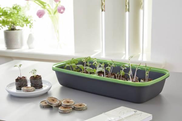 Minidrivhus BoQube, grå/grønn, medium