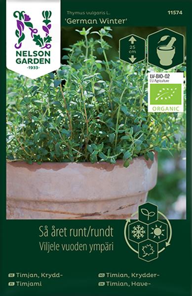 Timian 'German Winter' - Thymus vulgaris, Organic
