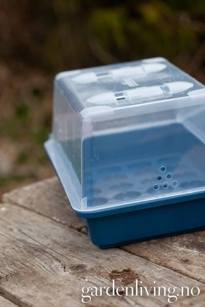 Miniveksthus - Propagator M 38 cm, blå