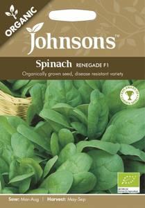 Bilde av Spinat 'Renegade' F1 - Spinacia oleracea - Organic