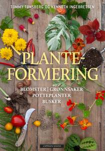 Bilde av Planteformering