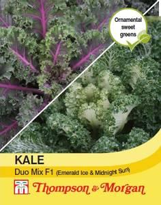 Bilde av Grønnkål 'Duo Mix' F1 - Brassica oleracea