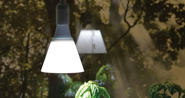 Plantelyspære LED 15W med skjerm