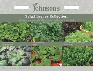 Bilde av Kolleksjon, salat