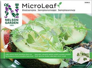 Bilde av Micro Leaf, Sareptasennep