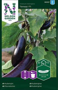 Bilde av Aubergine 'Teresa' F1 - Solanum melongena