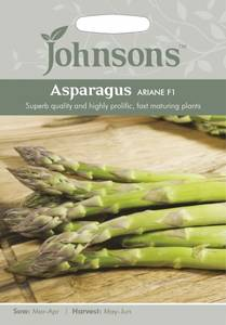 Bilde av Asparges 'Ariane' - Asparagus officinalis