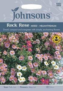 Bilde av Solrose 'Rock rose mixed' - Helianthemum nummularium