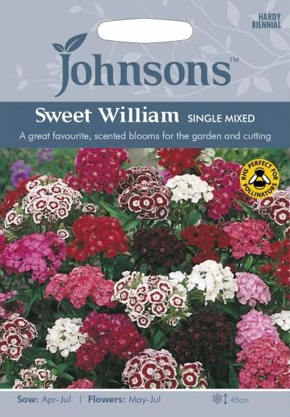 Nellik, busk 'Single Mixed' - Dianthus barbatus