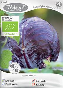 Bilde av Rødkål 'Langelijker Bewaar 2' - Brassica oleracea, Organic