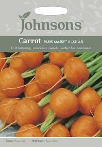 Bilde av Gulrot 'Paris Market 5' (Atlas)
