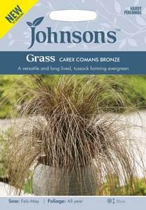 Bilde av Bronsestarr - Carex comans Bronze
