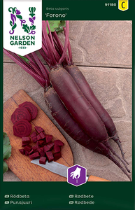 Bilde av Rødbete 'Forono' - Beta vulgaris