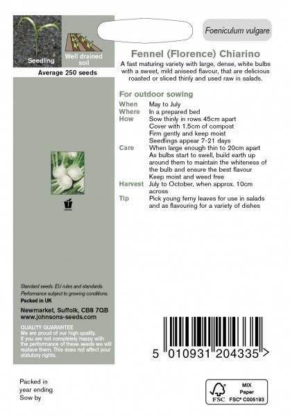 Knollfennikel 'Chiarino' - Foeniculum vulgare