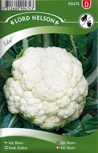 Bilde av Blomkål 'Idol - Brassica oleracea