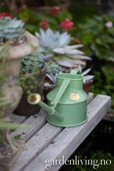 Vannkanne, Haws mini - plast, lysgrønn