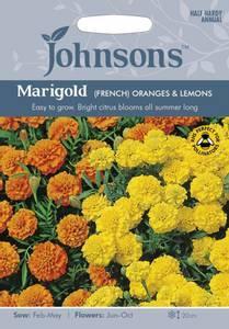 Bilde av Fløyelsblomst 'Oranges & Lemons' - Tagetes patula