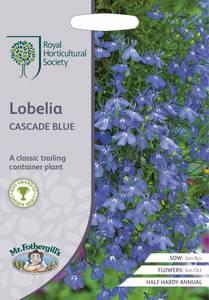 Bilde av Lobelia 'Blue Cascade' -  Lobelia erinus, Hengelobelia