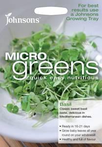 Bilde av Micro Greens, Basilikum