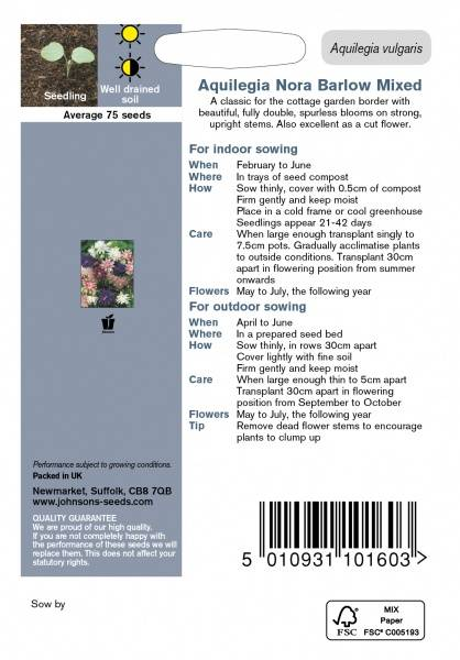 Akeleie 'Nora Barlow Mixed' - Aquilegia vulgaris
