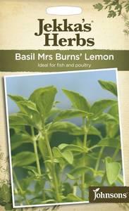 Bilde av Basilikum, sitron 'Mrs Burns' Lemon' - Ocimum x citriodora