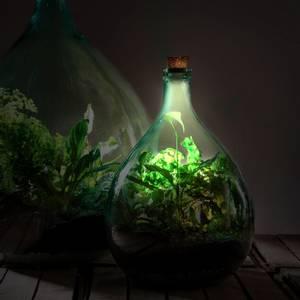 Bilde av Kork til terrarium med solcelle og LED lys