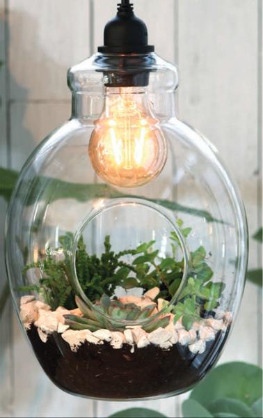 Terrarium åpen pære, hengende med lys