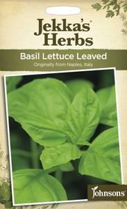 Bilde av Basilikum, salat 'Lettuce Leaved' - Ocimum basilicum