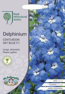 Bilde av Ridderspore 'Centurion Sky Blue' - Delphinium