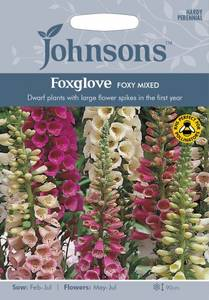 Bilde av Revebjelle 'Foxy Mixed' - Digitalis purpurea