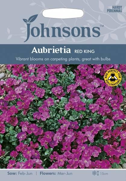 Blåpute 'Red King' - Aubrieta