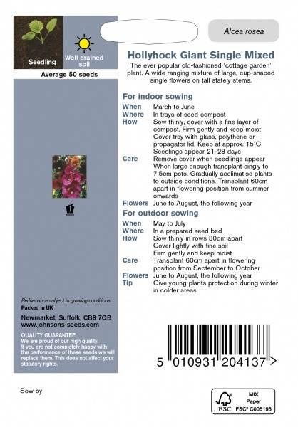 Stokkrose 'Giant Single Mixed' - Alcea rosea