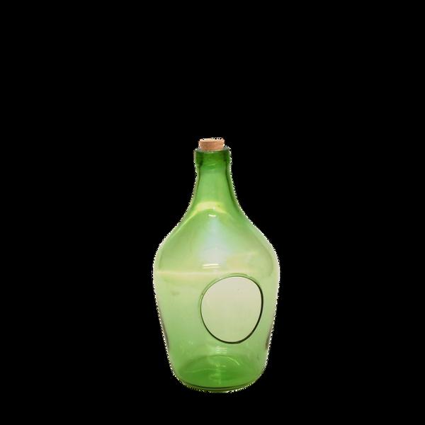 Terrarium åpen, grønn flaske 3 liter