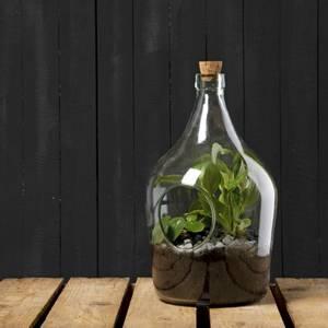 Bilde av Terrarium åpen, flaske 5 liter