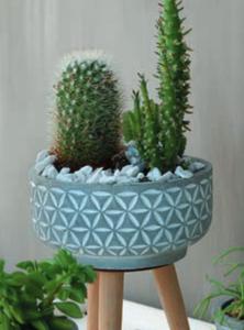 Bilde av Potteskål grå, med bein, blad 11 cm