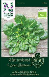 Bilde av Tatsoi, Japanske bladgrønnsaker - Brassica rapa