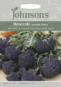 Bilde av Brokkoli, småhodet 'Summer Purple'