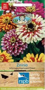 Bilde av Sinnia 'Whirlygig Improved Mixed'