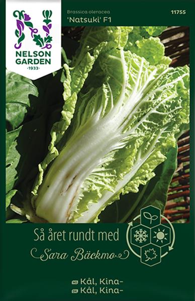 Kinakål 'Natsuki' F1 - Brassica oleracea