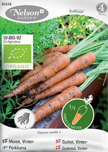 Bilde av Gulrot 'Rothild 2' - Daucus carota - Organic
