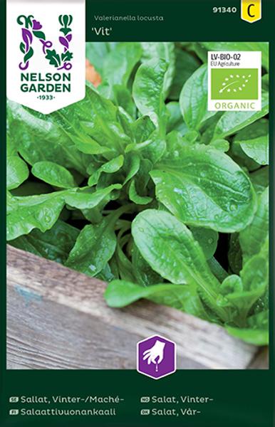 Feltsalat 'Vit' - Valerianella locusta var. oleracea - Organic