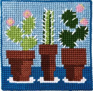 Bilde av kits for kids Kaktus