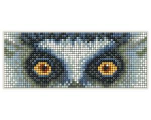 Bilde av Lemur Magnet kit