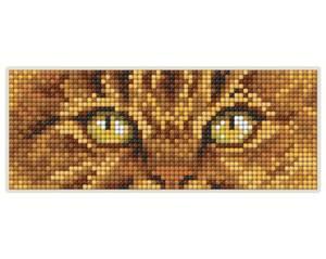 Bilde av Katt Magnet kit