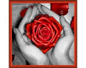 Bilde av Rose i hånd 25x25cm